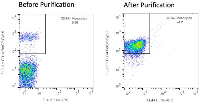 CD14 Monocytes Before and After Purification