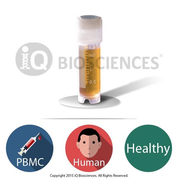 Healthy Human PBMCs