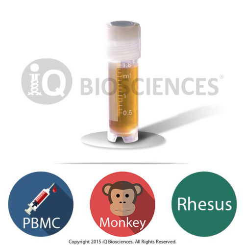 produce image for rhesus monkey pbmcs