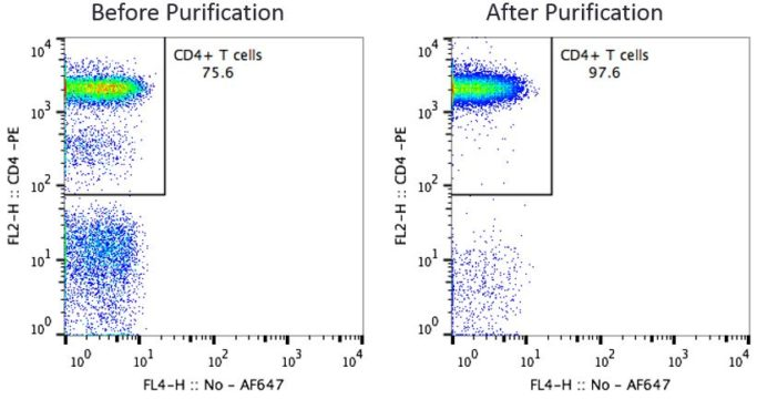 CD4 T Cells Before and After Purification
