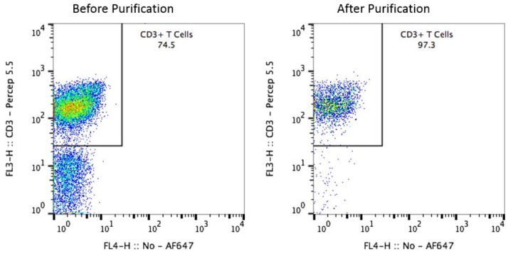 Cyno CD3 Pan T Cells Before and After Purification