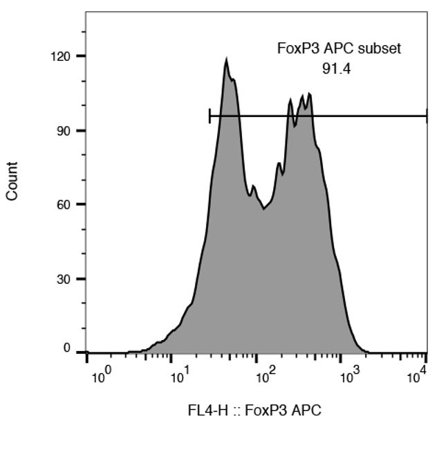 FOXP3 Expression of iTregs